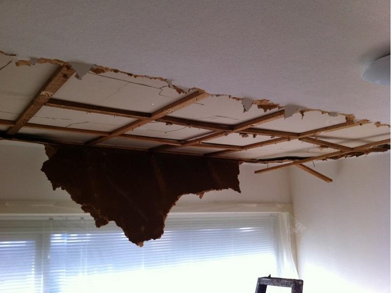 Beroemd Zwolle binnenschilder, behangen, sauswerk, plafond renovatie WR94